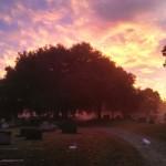 Bonaventure Cemetery Photography